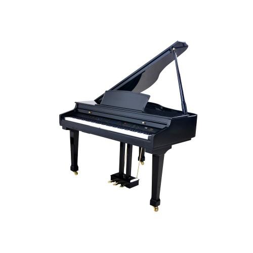 פסנתר כנף חשמלי