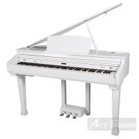 פסנתר כנף חשמלי+3 שנות אחריות