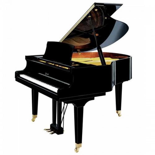 פסנתר כנף 173 ס''מ