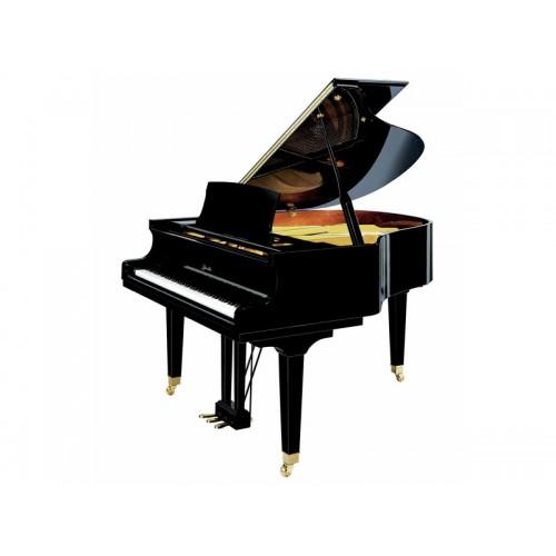 פסנתר כנף להשכרה